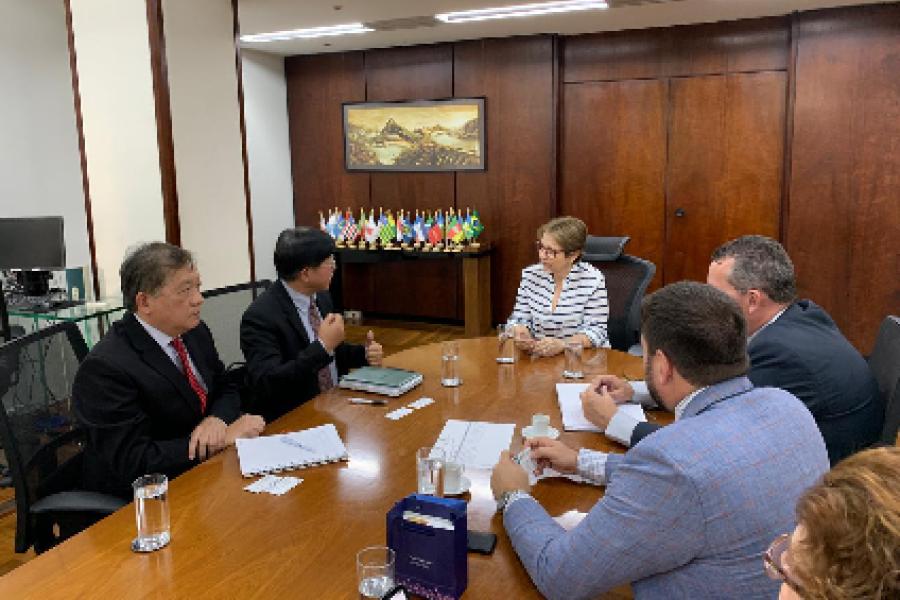 Ministra Tereza Cristina recebe em audiência dirigentes da Tide Group