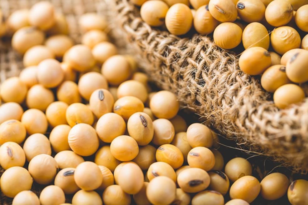 MT: produtores de soja já preparam a terra, mas Aprosoja recomenda não estocar insumos