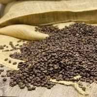 Café é o tema da semana da série Agrotecnologia no dia a dia