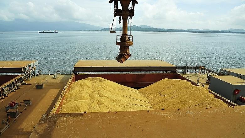 Brasil deve exportar 6,7 milhões de toneladas de soja em agosto, diz Anec